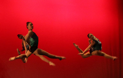 """Orchesis' """"Pulse"""" leaves hearts racing"""