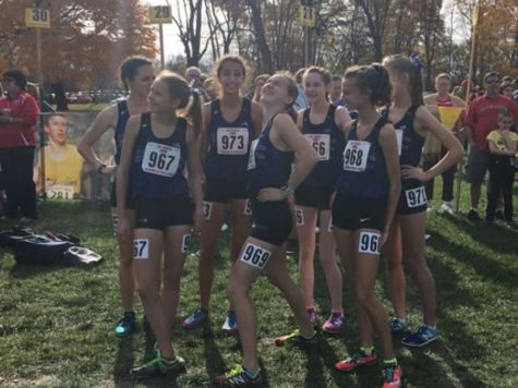 Girls cross country impresses at state competition