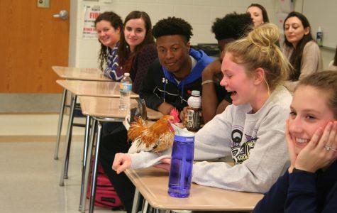 Zoology amazes students at RB