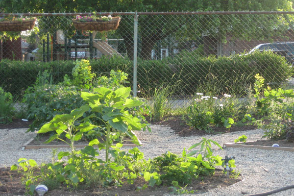 RBHS Endzone Garden