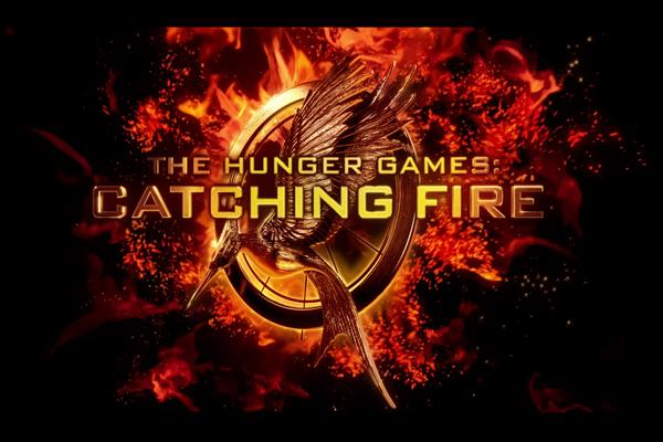 Catching Fire set a fire in me