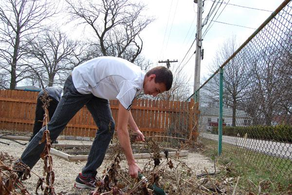 Sweat and toil for the good of the garden.