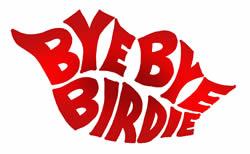 "Back in directors' chairs for ""Bye, Bye, Birdie"""