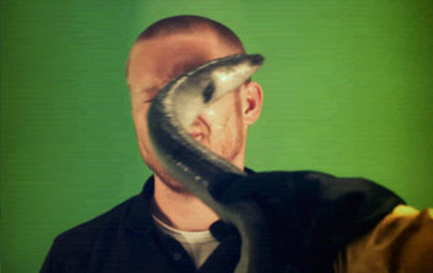 Weird of the Web:  Eel Slap