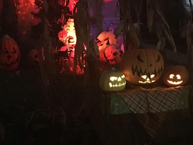 Pumpkin displayed at a house with Freaky Frights on Forest.