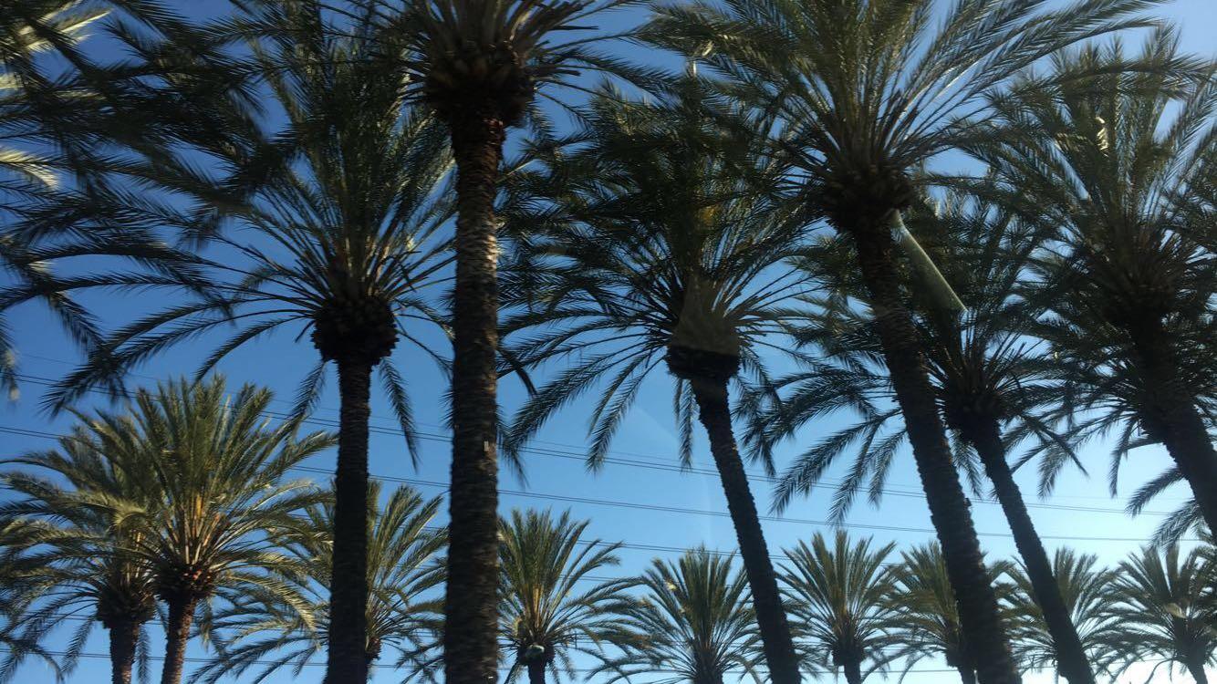 Highlights from Ramirez's trip to Newport Beach, California.
