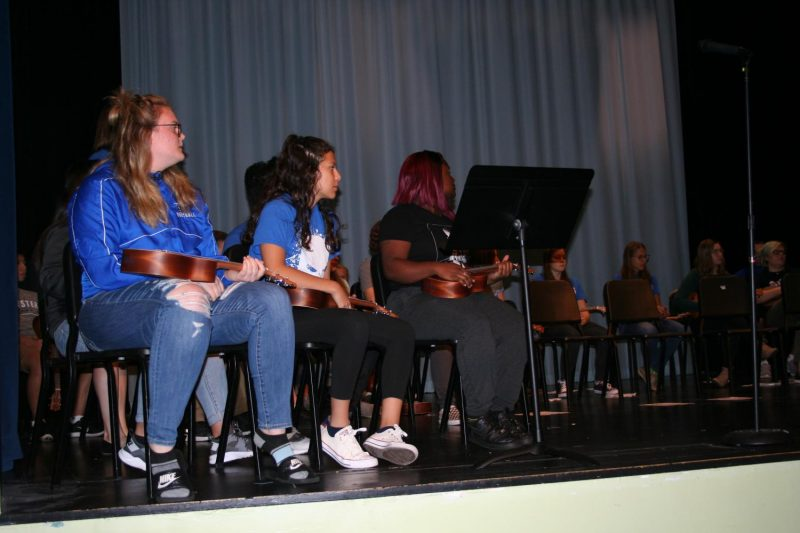 Fine arts courses host first ukulele concert