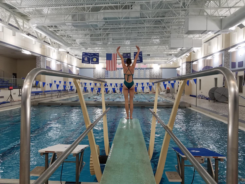 Katelyn Stowe prepares to dive