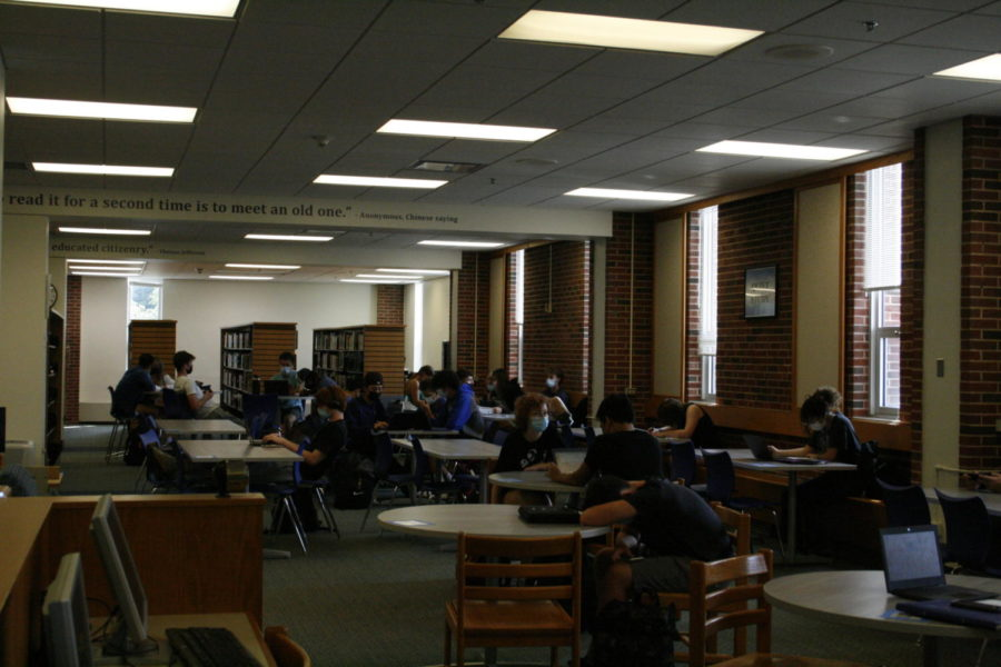Students working and studying in the library.